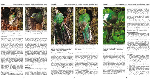 Natural history of Resplendent Quetzal