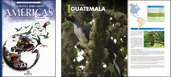 Important Bird Areas Guatemala