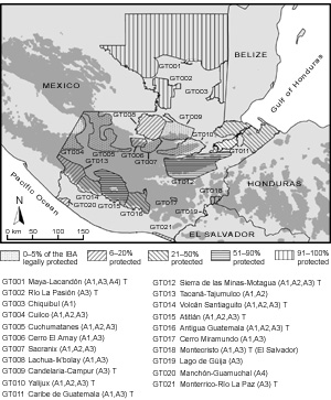 Important Bird Areas in Guatemala
