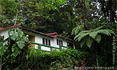 Lodging at Ranchitos del Quetzal
