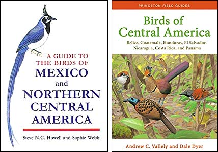 Howell and Webb (1995) Birds of Mexico and northern Central America, Valley and Dyer (2018) Birds of Central America: Belize, Guatemala, Honduras, El Salvador, Nicaragua, Costa Rica, and Panama.