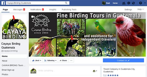 Cayaya Birding on facebook