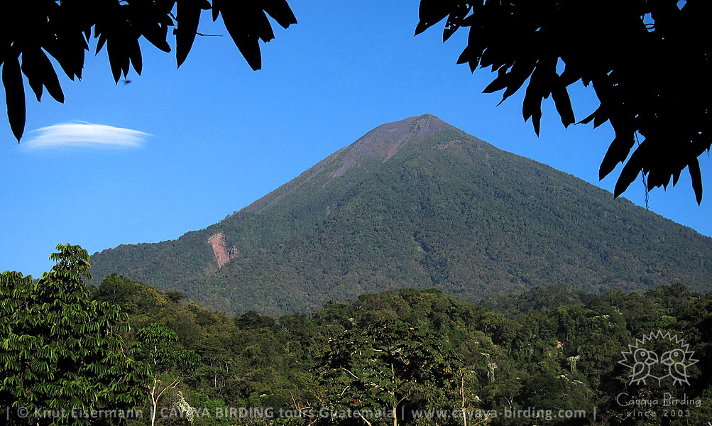 Atitlán volcano, Highland Endemics Tour in Guatemala with CAYAYA BIRDING