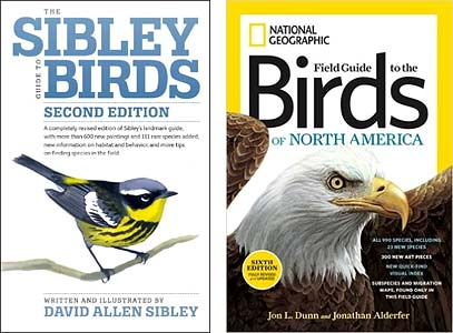 Sibley, National Geographic, birds of North America
